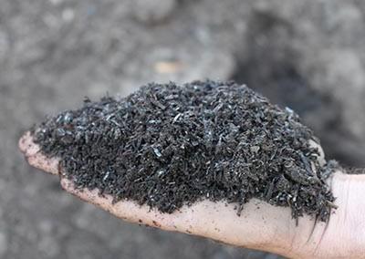 Compost - Organic