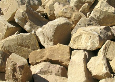 Mt Angus Sandstone