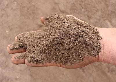 Soil - Budget